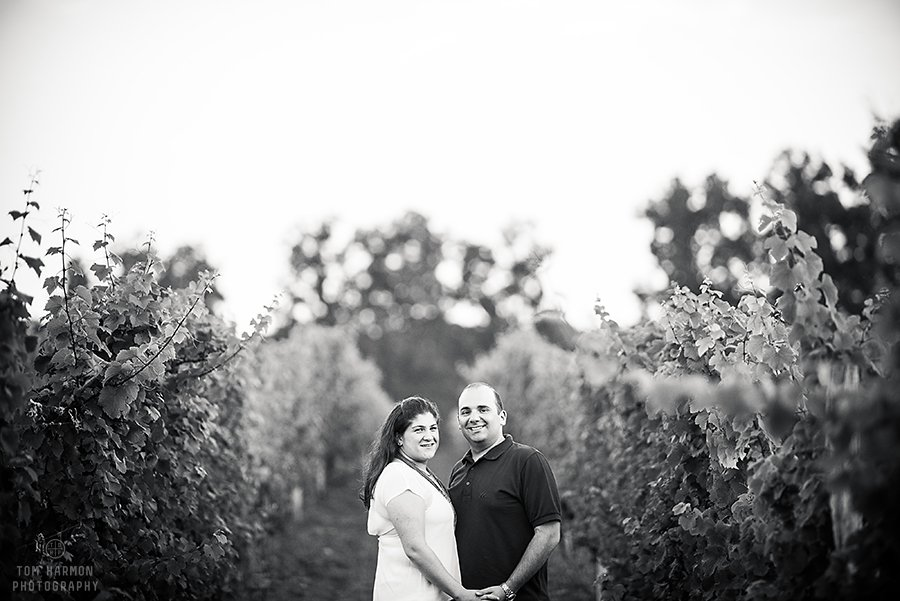 engagement pictures at lucas vineyards