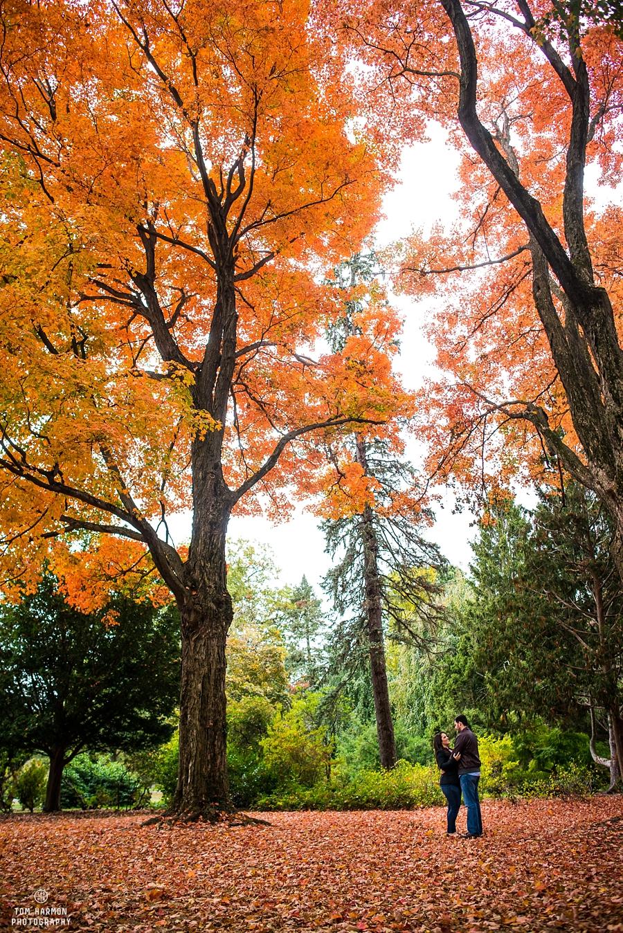 NJ_Botanical_Gardens_Engagement_0007
