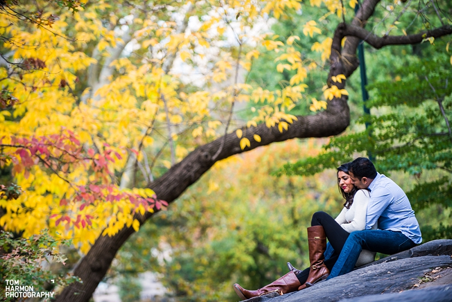 Central_Park_Castle_Engagement_0017